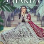 Time Chakda Song Cast & Female Model Name